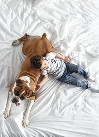 mascotas2_Gomel